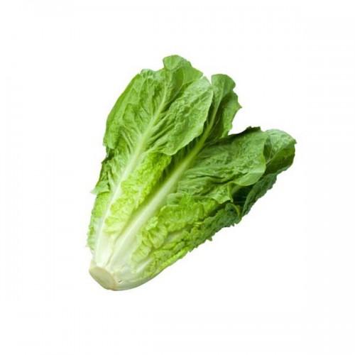 zelen-salat-romen