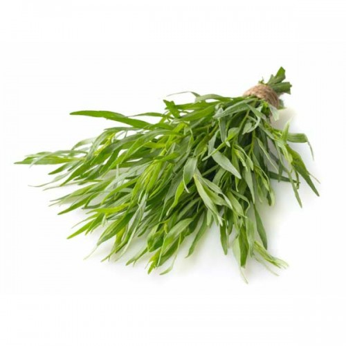 zelen-tarxun