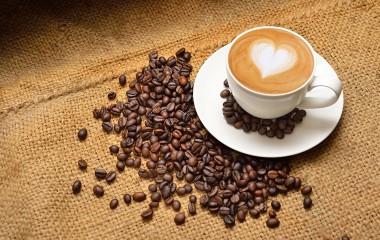 Кофе — это ежедневный энергетический напиток для большинства людей. Его аромат и вкусовые качества дарят настоящее наслаждение и неповторимое внутреннее удовлетворение. Существует множество сортов и разновидностей кофе, поэтому выбрать наиболее подходящий вариант достаточно сложно (особенно, если человек еще никогда не покупал и не пробовал его). Как выбрать хорошее кофе в магазине? Чтобы купить кофе, необходимо […]